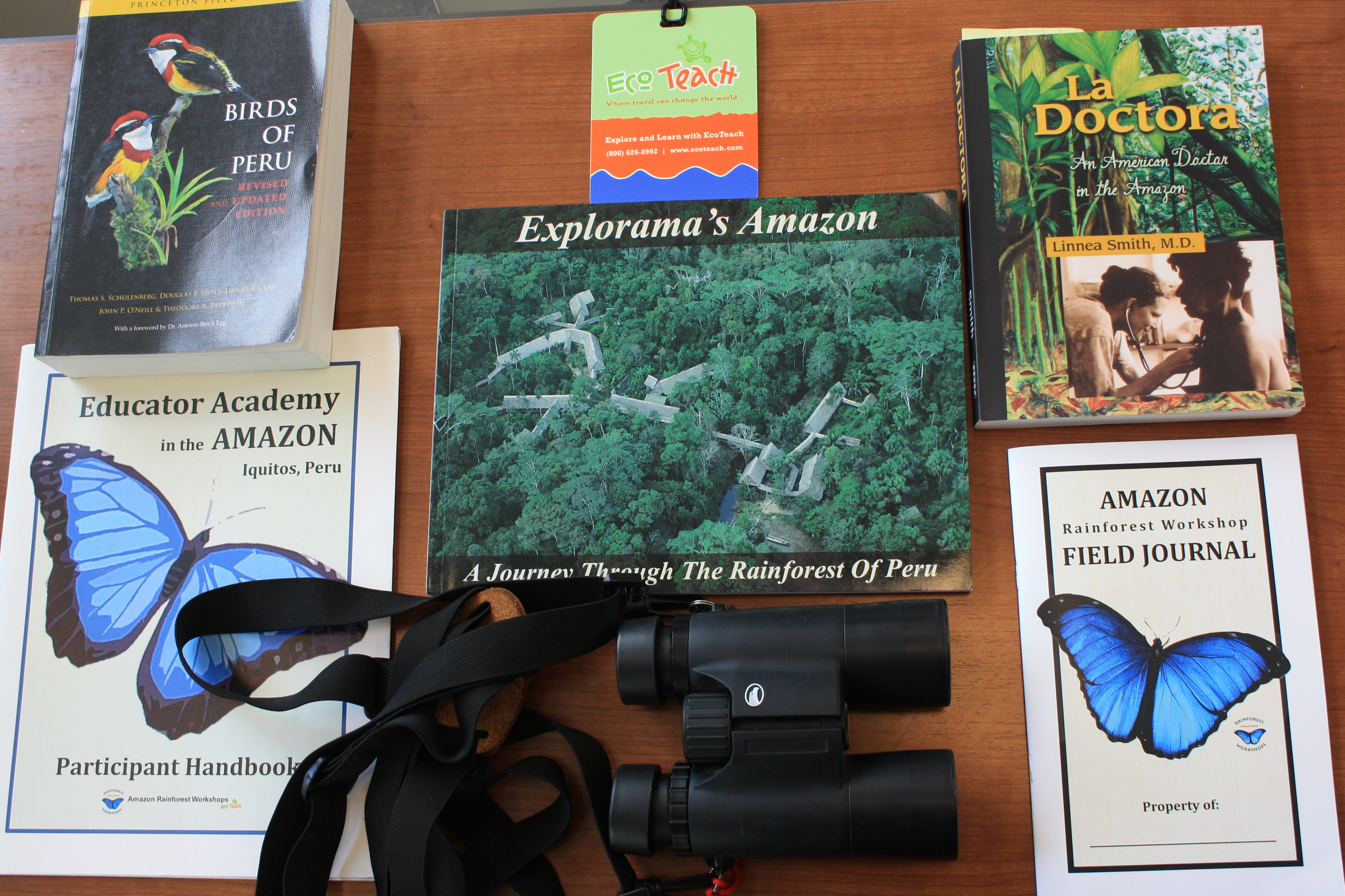 field notes from the amazon official blog of amazon rainforest